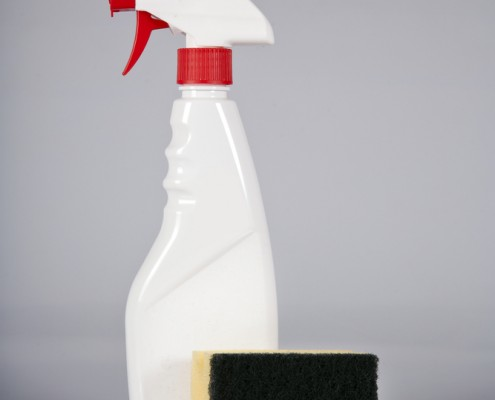 cleaningsponge215